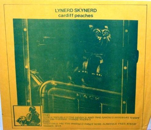 Lynyrd Skynyrd Cardiff Peaches