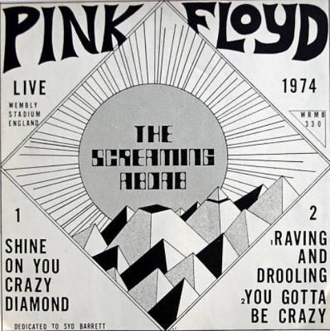 Pink Floyd TS Abdab