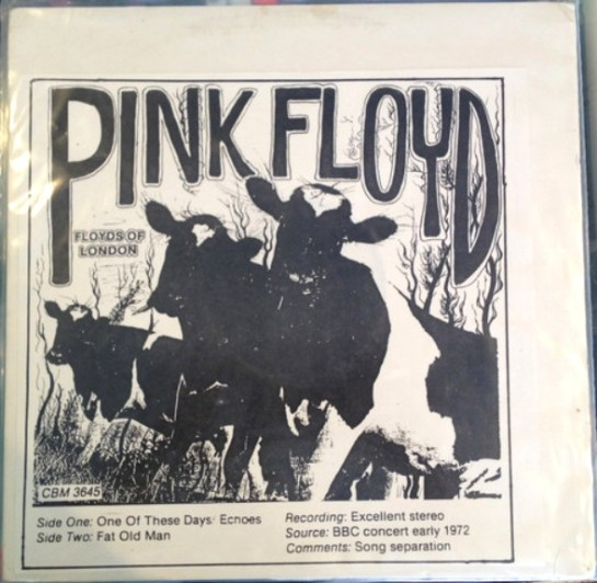 Pink Floyd Floyds of London copy
