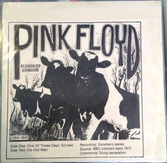 Pink Floyd Floyds of London copy