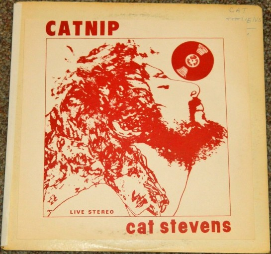 Steven Cat CATNIP red