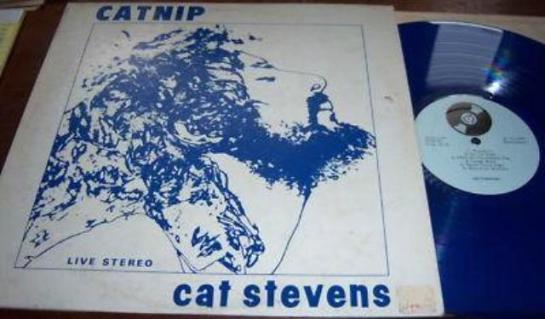 Stevens Cat Catnip 2 cv