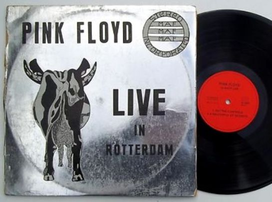 Pink Floyd Live in Rotterdam 2