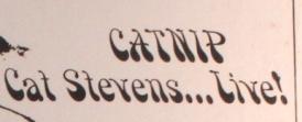 Stevens Cat Catnip title