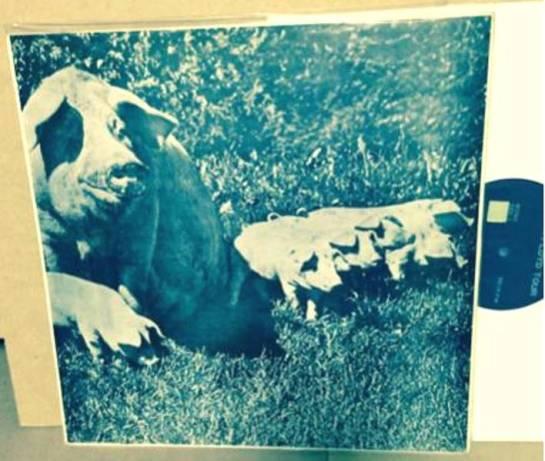 Pink Floyd BoT 72 3 b