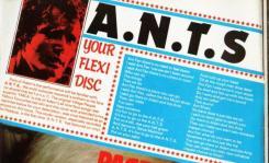 A.N.T.S.